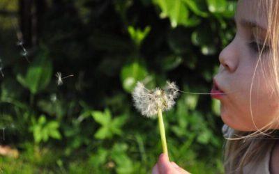 Películas para enseñar ecología a los más pequeños