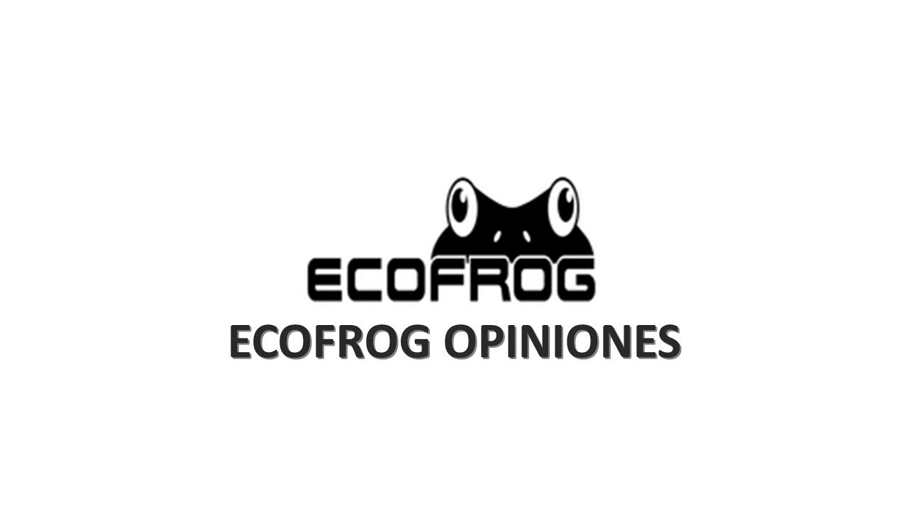 ecofrog opiniones lavar la ropa sin detergente